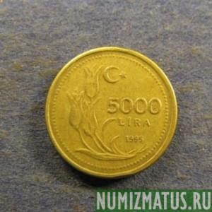 5000 лир в рублях для монет купить пермь
